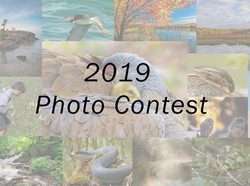 2019 Photo Contest Winners Announced!